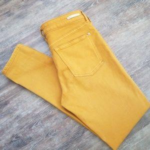 Pilcro Anthro Skinny Jeans